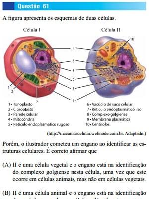 Nível de dificuldade em biologia surpreendeu professores na 1ª fase da Unesp 2014 (Foto: Reprodução)