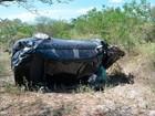 Mãe morre e filhos ficam feridos em acidente na Bahia, diz PRF