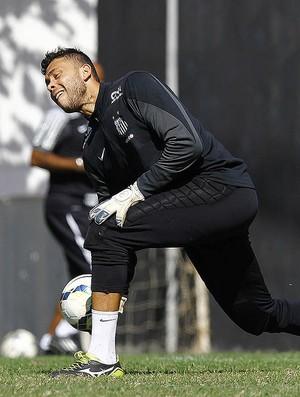 Vladimir goleiro Santos (Foto: Ricardo Saibun/ Santos FC)