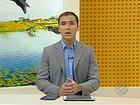 Operação combate comércio ilegal de madeira no Pará