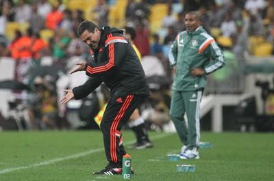 Vanderlei Luxemburgo na partida contra o Fluminense (Foto: Gilvan de Souza / Flamengo)