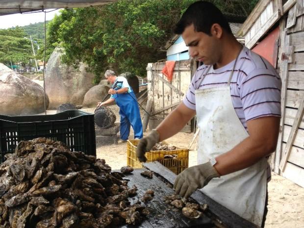 Embargo à maricultura foi assinado no dia 15 (Foto: Clauzir Silva/Divulgação)