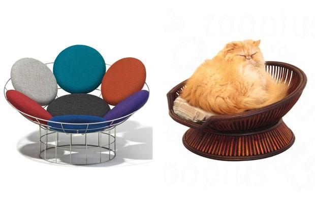 Design para pets (Foto: reprodução)
