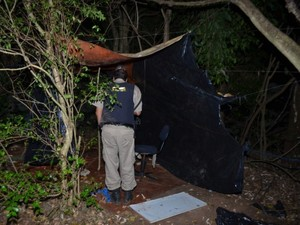 Tráfico de drogas em Araxá (Foto: Polícia Militar/Divulgação)