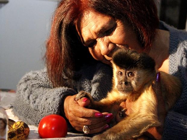 Macaca-prego 'Chico' ficou em associação de Assis durante 16 dias (Foto: Fabio Rodrigues/G1)