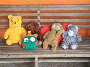 Brinquedos arrecadados são higienizados e entregues aos 13 filhotes abrigados no refúgio. (Foto: Arlesson Sicsú/Semcom)
