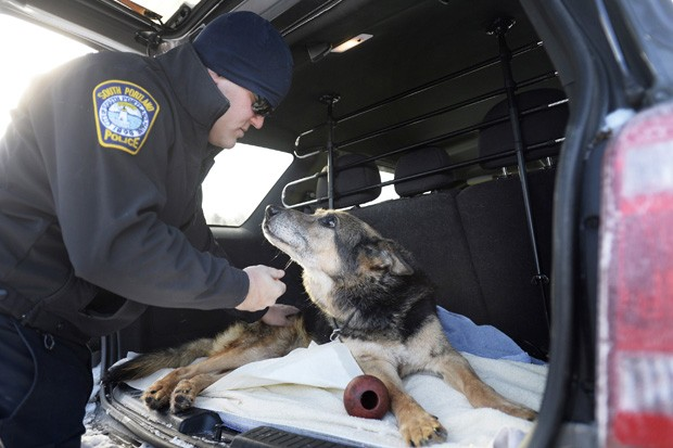 Oficial Shane Stephenson, que levou o cão aposentado Sultan para sua casa como animal de estimação depois da aposentadoria do agente canino, interage com cão antes de levá-lo para ser eutanasiado  (Foto: AP Photo/The Press Herald, Shawn Patrick Ouellette)