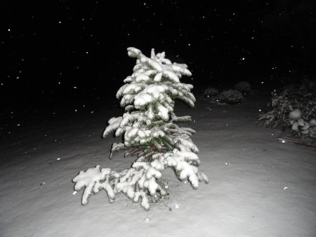 Neve caiu em Rancho Queimado na noite de segunda-feira (22) (Foto: Rafael Heinz/Divulgação)