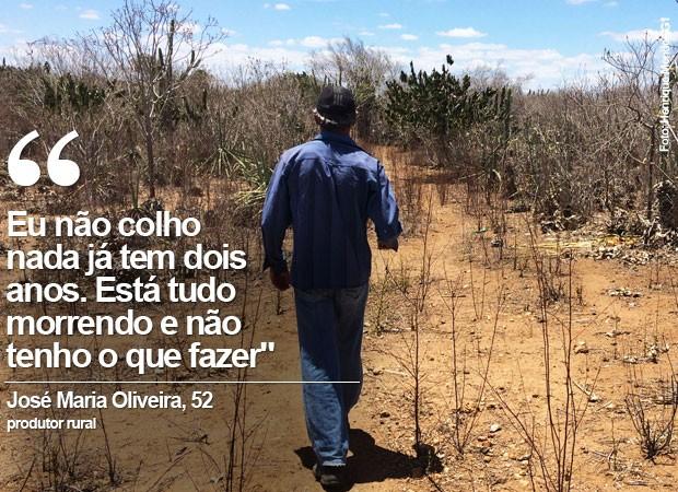 Zé Maria é produtor de sisal no município de Valente, no nordeste da Bahia (Foto: Henrique Mendes / G1)