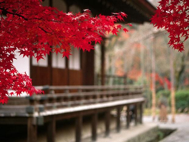 Templo de Tenryuji, em Arashiyama, no Japão (Foto: Creative Commons)