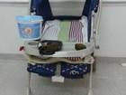 Polícia encontra meio quilo de maconha em carrinho de bebê no RS