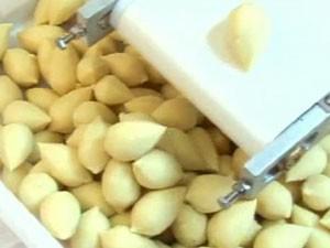 Empresa vende cerca de 1.000 máquinas de fazer coxinha ao mês (Foto: Reprodução/TV Globo)