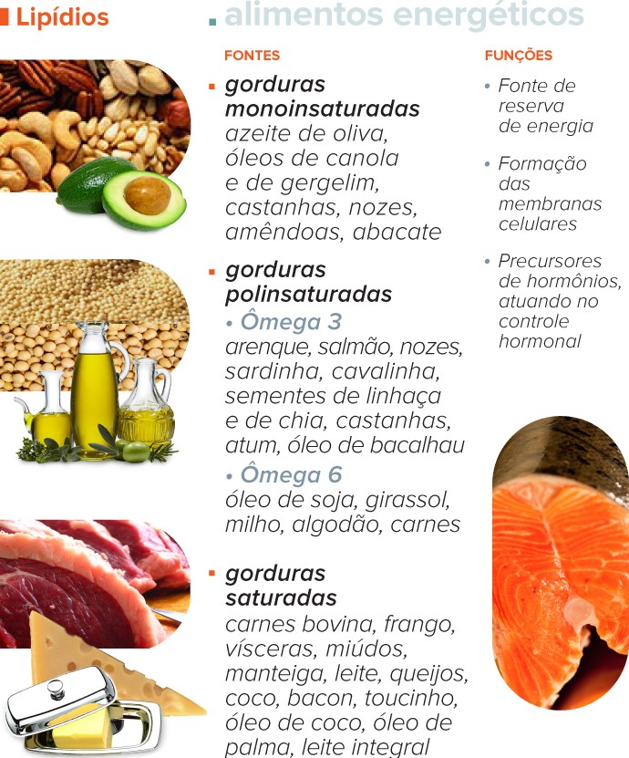 Você sabe mesmo para que servem carboidratos, proteínas e lipídios?
