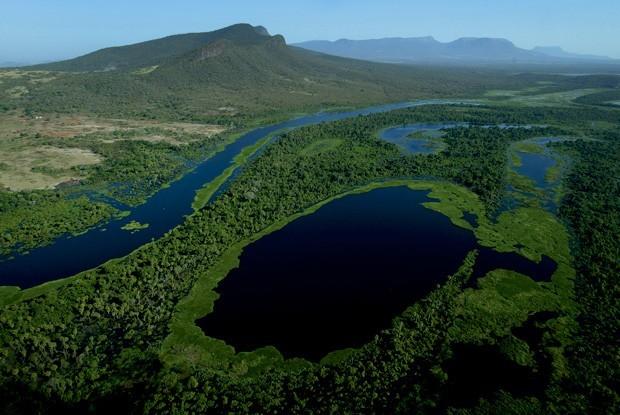 Vista aérea do pântano (Foto: Divulgação)