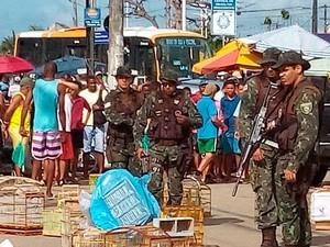 Na operação contra o combate ao comércio de animais em Salvador, onze pessoas também foram presas (Foto: Divulgação/COPPA)