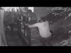 Vídeo flagra grupo espancando empresário no RJ; imagens fortes