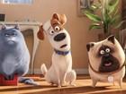 'Pets - A Vida Secreta dos Bichos' estreia em cinemas do Sul do Rio