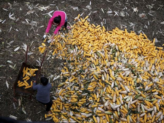 Pequim precisa garantir o abastecimento de alimentos para sua população de 1,4 bilhão pessoas, por isso investe na tecnologia (Foto: Reuters)