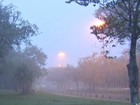 Dia começa com temperatura amena e nevoeiro em várias cidades de MS