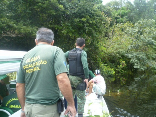Operação 'Morumbi' foi realizada no Alto Solimões, no interior do Amazonas (Foto: Divulgação/IBAMA)