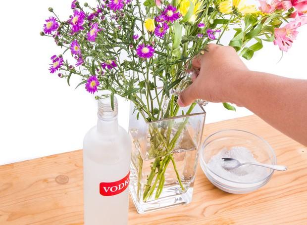 4-vodca-e-acucar-nas-plantas (Foto: Thinkstock)