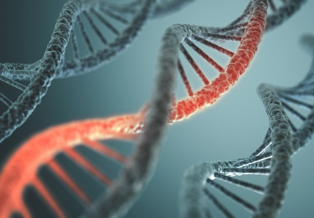 Estrutura do DNA (Foto: Thinkstock)