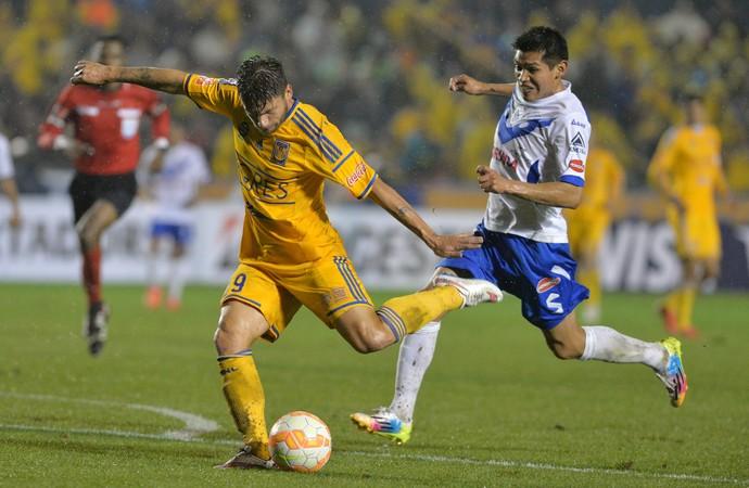 Rafael Sobis Tugres 4 x 0 San José Libertadores (Foto: EFE)