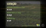 Arroba do boi gordo fecha a semana cotada a R$ 137,90