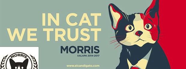 Página do felino do Facebook é inspirada na campanha de Barack Obama (Foto: Reprodução/Facebook/El Candigato Morris)