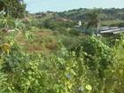 Mato alto e erosão em área de lazer geram queixas em Rio Pardo, SP
