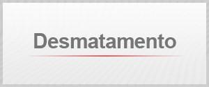 Selo agenda Desmatamento (Foto: Editoria de Arte/G1)