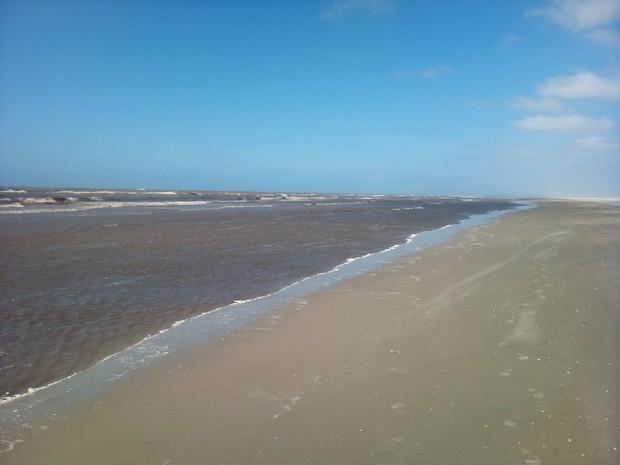Estudiosos do GEMARS monitoram praias gaúchas há 20 anos. Projeto Nossa Terra (Foto: Marcos Pereira/RBS TV)