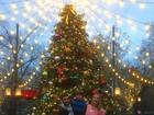 Luana Piovani posa em clima natalino com o marido e o filho