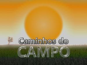 Caminhos do Campo (Foto: Arte RPC)