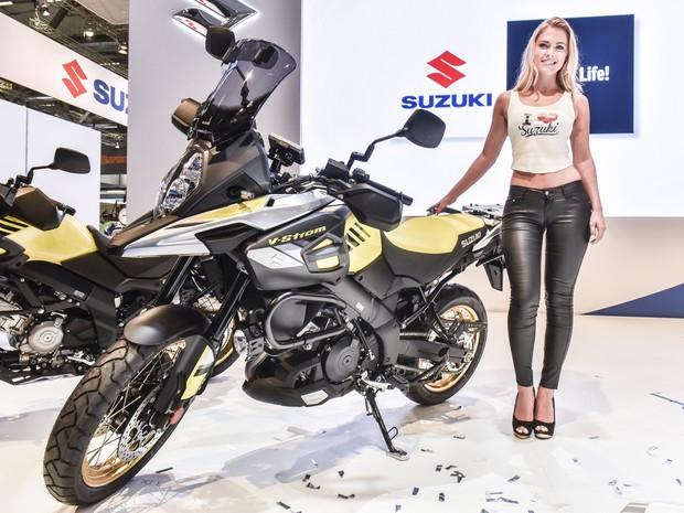 Suzuki V-Strom 650 (Foto: Divulgação / Intermot)