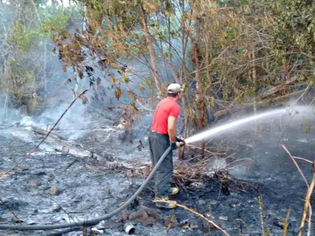 Bombeiros durante combate a incêndio no interior do estado (Foto: Divulgação/Corpo de Bombeiros)
