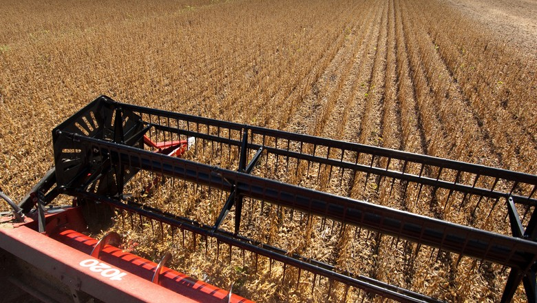 soja-graos-colheita (Foto: USDA/CCommons)