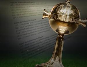 BLOG: Fase de grupos da Libertadores começa a se definir