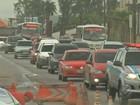 Congestionamento na BR-316 chega a oito quilômetros, diz PRF