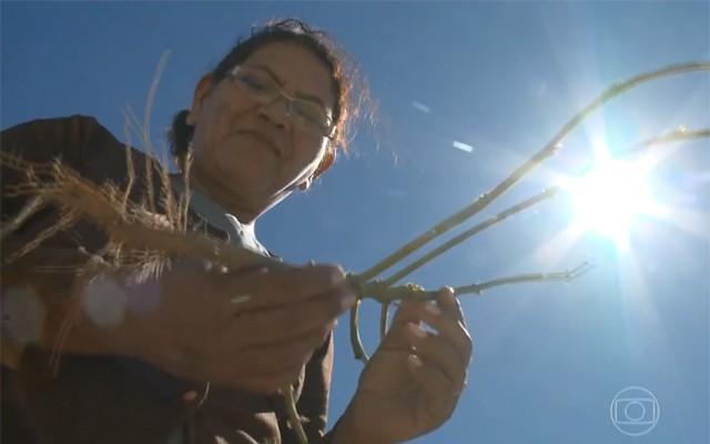 Os moradores tem sofridos com os efeitos da seca  (Foto: Reprodução/TV Grande Rio)