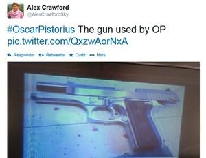 arma usada por Oscar Pistorius crime (Foto: Reprodução / Twitter)