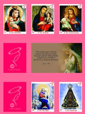 Álbum de figurinhas com imagens de Maria foi lançado na Paraíba (Foto: Reprodução / Álbum de Figurinhas da Maria)
