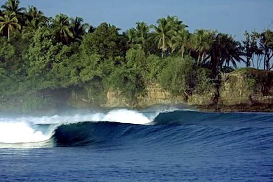 Mentawaii Fora de Época