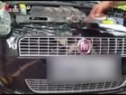 Gato é resgatado de dentro de capô de carro no Paraná