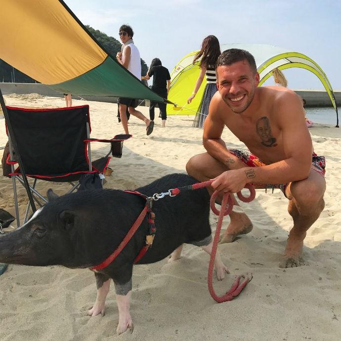 BLOG: Atacante alemão Podolski aproveita praia no Japão ao lado de um porco