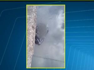 Corpo de Beatriz foi achado dentro de um saco plástico (Foto: Reprodução / Globo)