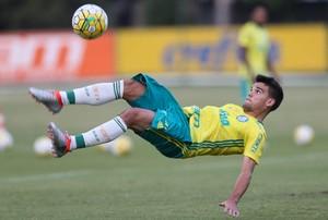 Rodrigo Palmeiras (Foto: César Greco / Ag. Palmeiras / Divulgação)