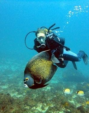 Arraial do Cabo é considerada a capital do mergulho (Foto: Shirlei Garcia/ Reprodução G1)