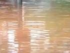 Até o dia 22, chuva em Brasília é 47% superior à média de janeiro, diz Inmet