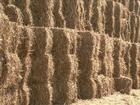 Usina em Alagoas começa a produzir o etanol de segunda geração
